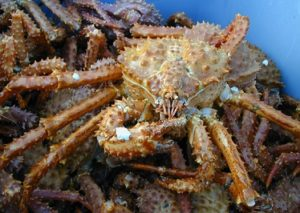 Southeast Alaska Gold& King Crab